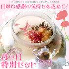 工芸茶 商品 ロングページ LP